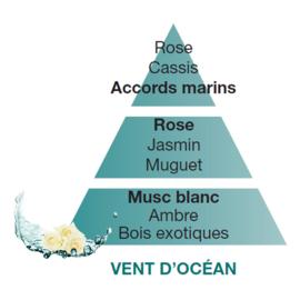 Vent d'océan - Ocean Breeze 500ml