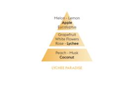 Litchi Paradis / Lychee Paradise 500ml