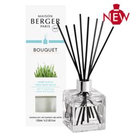 Parfumverspreider Cube Herbe Fraîche