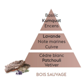 Bois sauvage / Wild wood 500ml