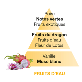 Fruits d'Eau / Water Fruits