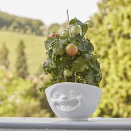 Tassen Bowl 500ml - Laughing