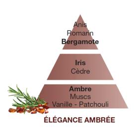 Elégance Ambrée / Amber Elegance