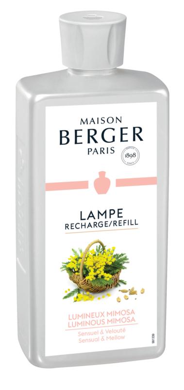 Lumineux Mimosa / Luminous Mimosa