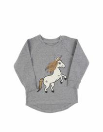 Dear Sophie - Unicorn Jersey Longsleeve