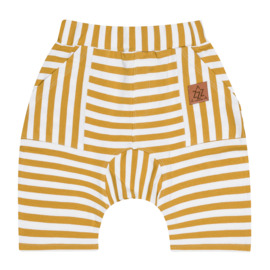Zezuzulla - Yellow Strips Shorts
