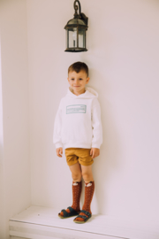 Mama's Feet - Animals - Greg the Ginger Fox