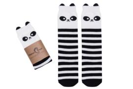 Mama's Feet - Animals - Wanda the Brave Panda