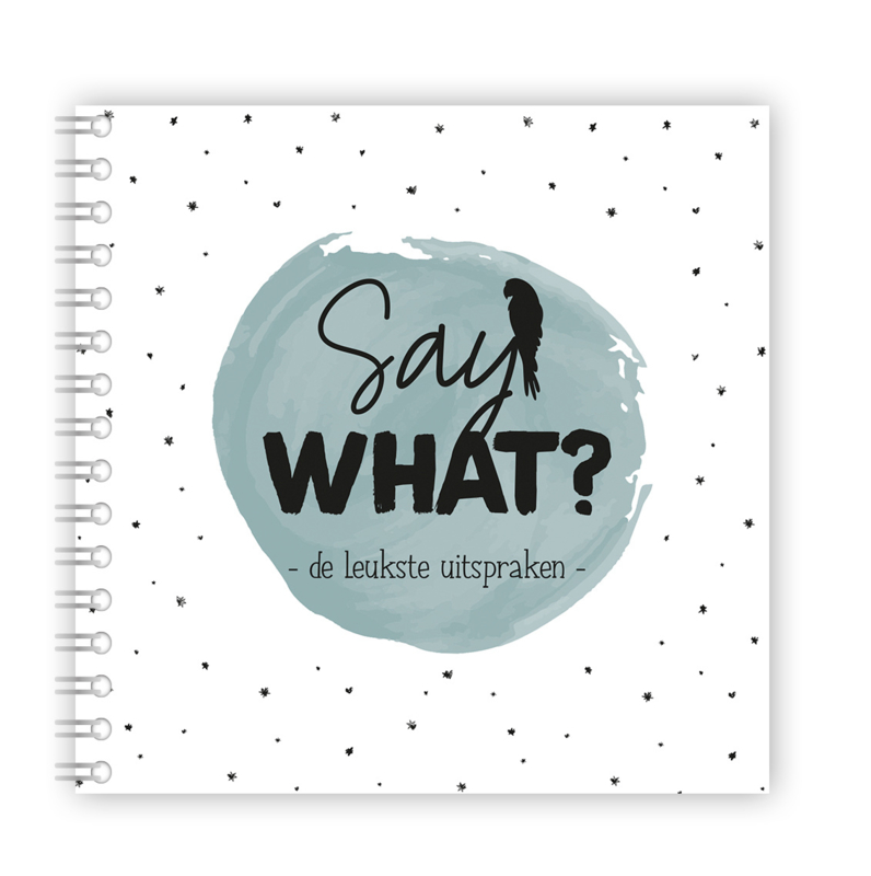 Say what - uitsprakenboekje blauw