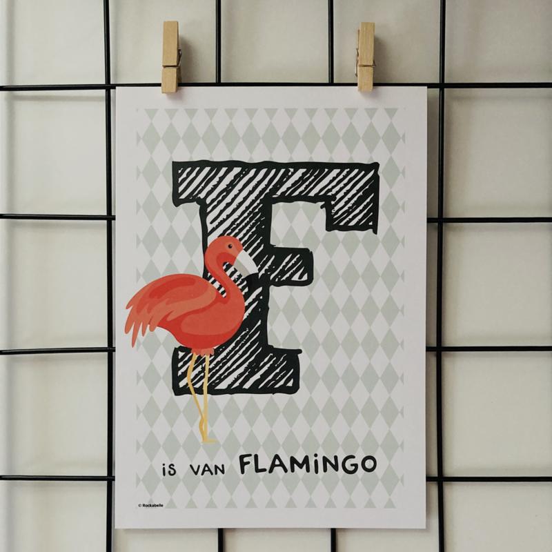 Dierenposter F is van flamingo (groen)