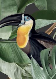 Patroonbehang Botanical Birds Black - 97,4 x 280 cm - KEK Amsterdam