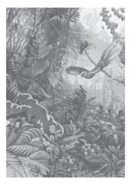 Fotobehang Tropical Landscapes Black & White - 194,8 x 280 cm - KEK Amsterdam
