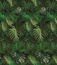 Behangpaneel Monstera Leaves - 190 x 220 cm - KEK Amsterdam