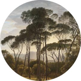 Behangcirkel diameter 237,5 cm