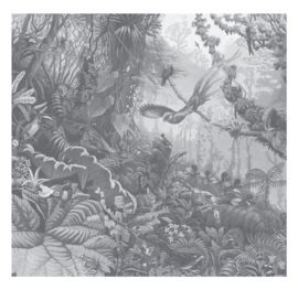 Fotobehang Tropical Landscapes Black & White - 292,2 x 280 cm - KEK Amsterdam