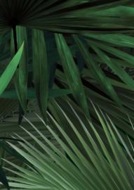 Patroonbehang Palm Leaves - 97,4 x 280 cm - KEK Amsterdam