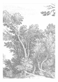 Fotobehang Engraved Landscapes V - 194,8 x 280 cm - KEK Amsterdam