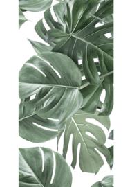 Patroonbehang Monstera White - 97,4 x 280 cm - KEK Amsterdam