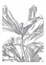 Fotobehang Engraved Flowers III - 194,8 x 280 cm - KEK Amsterdam