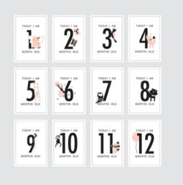 Baby milestone kaarten roze House of Products
