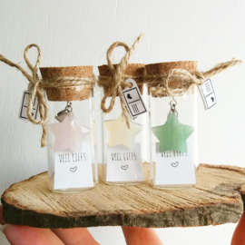 Flesje met Bergkristal hangertje stervorm