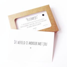 Pluimpjes set 2, 25 verschillende positieve teksten in een doosje (NL)