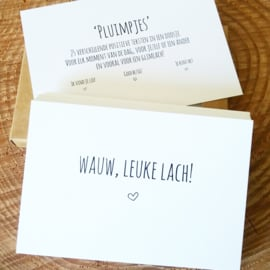 Pluimpjes set 1, 25 verschillende positieve teksten in een doosje (NL)