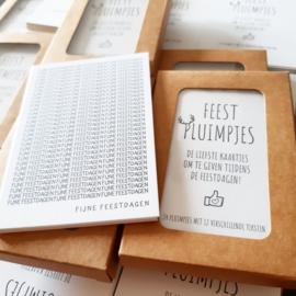 Pluimpjes Feestdagen editie | 2 x 12 positieve teksten in een doosje (NL)