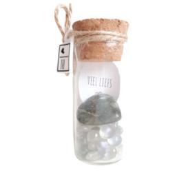 Flesje met Labradoriet edelsteentjes en hartje (2cm)
