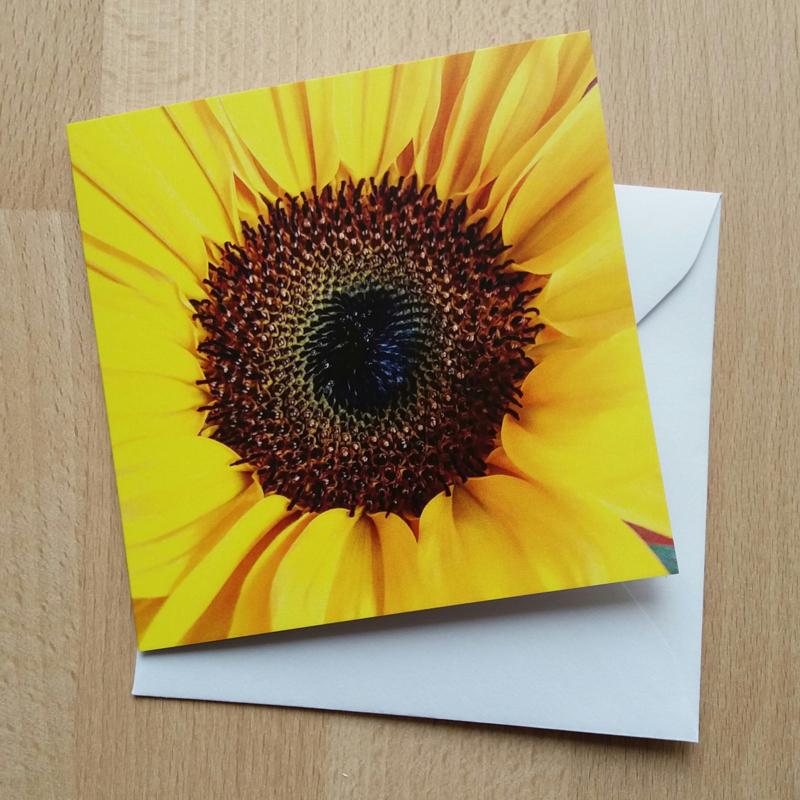 Sunflower(dubbele uitvoering met enveloppe, 10x10cm)
