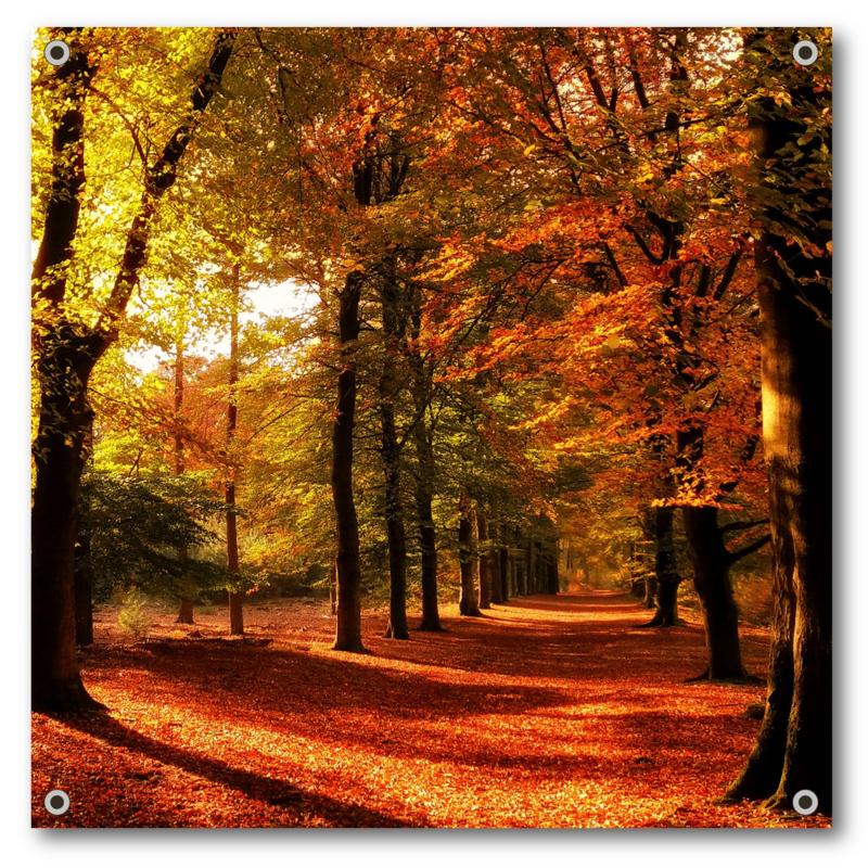 Tuinposter | Herfstsfeer