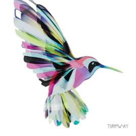 Servetten Kolibri