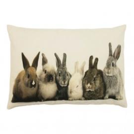 Canvas kussen konijntjes