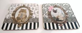 Geschenkset 'Barocco Cats'