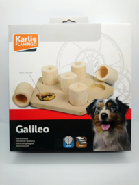 Brain train Galileo
