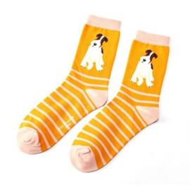 Damessokken Fox Terrier met strepen (geel)