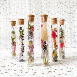 Droogbloemen in glazen buisje met kurk - 15 cm