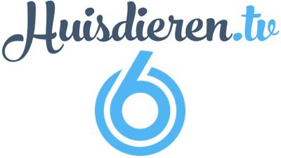 VersVleesHond.nl is bekend van Huisdieren TV (SBS6)