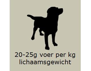 Voedingsadvies volwassen hond
