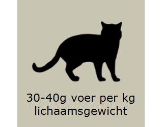 Voedingsadvies kat