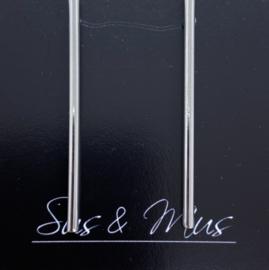 Speciale stekers zilveren staven