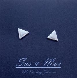 Zilver driehoekjes