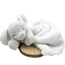 'Tuttle olifant' BamBam