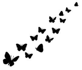 Raamstickers Vlinders