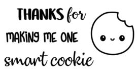 Knutselsticker Cookie