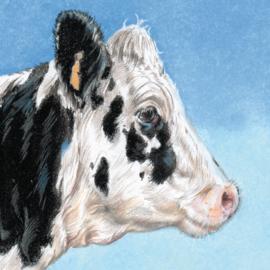 Themakaarten - serie 3 - Koeien in de buitenlucht (4 x 2 kaarten)