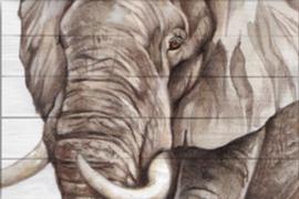 Reproductie olifant