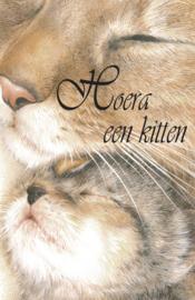 Hoera een kitten 3