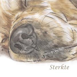 Condoleance kaart Labrador