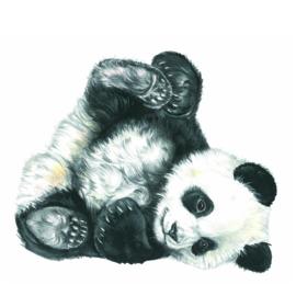 Wie houdt er nu niet van een lui Pandaatje?